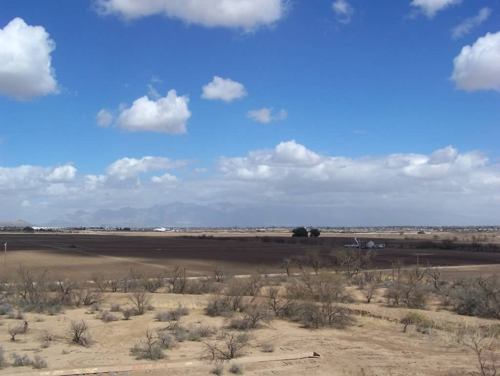 Desert Pic 2